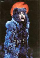 付録付)パンフ)CATS 1985年版