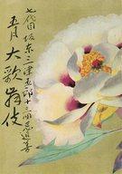 パンフ)七代目坂東三津五郎十三回忌追善 五月大歌舞伎(1973年)