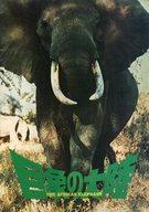 パンフ)巨象の大陸 The African Elephant
