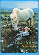 パンフ)野にかける白い馬のように Run Wild Run Free