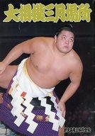 パンフ)大相撲三月場所(1989年)