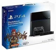 プレイステーション4本体 First Limited Pack with PlayStation Camera(HDD 500GB/CUHJ-10001) (状態:コントローラ欠品)