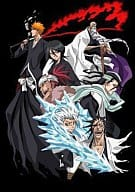 BLEACH fracture surface ・ VS Shinigami Hen 1