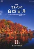 NHKさわやか自然百景 美しい日本の四季12か月 11月