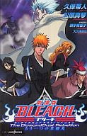 BLEACH The Theater Version The Diamond Dust Rebellion Another Ice Ring