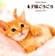 Pretty Kitten kitten around 2019 calendar