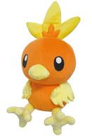"""Achamo ALL STAR COLLECTION S size plush toy """"Pokémon"""""""
