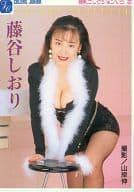 藤谷しおり 巨乳コレクション Vol.2