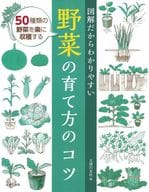 Tips for growing easy-to-understand vegetables as illustrated