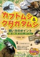 甲蟲和雄鹿甲蟲如何防止幼蟲/成蟲到如何飼養牠們