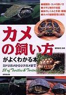 這本書是一隻綠海龜,你能理解如何保持海龜的健康嗎?