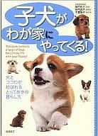 一隻小狗會來我家! - 一種生活方式,一隻狗和一隻心被綁在一起