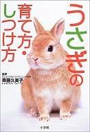 如何飼養兔子·如何訓練