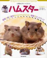 倉鼠小動物初學者指南