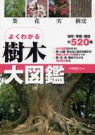 <<趣味・雑学>> 樹木大図鑑 / 平野隆久