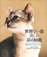 世界上最美麗的貓的圖畫書